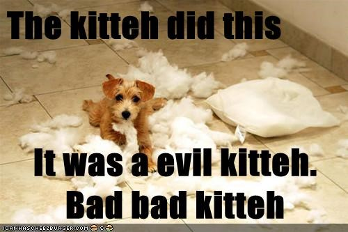 The kitteh did this It was a evil kitteh. Bad bad kitteh