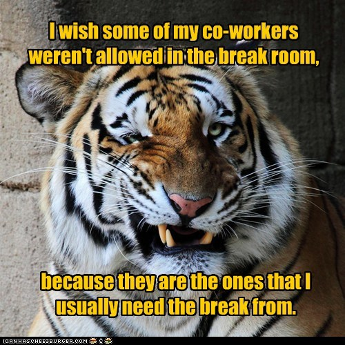 work co-workers tiger break funny vacation - 7529655040