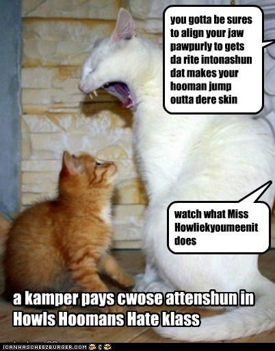 a kamper pays cwose attenshun in Howls Hoomans Hate klass you gotta be sures to align your jaw pawpurly to gets da rite intonashun dat makes your hooman jump outta dere skin watch what Miss Howliekyoumeenit does