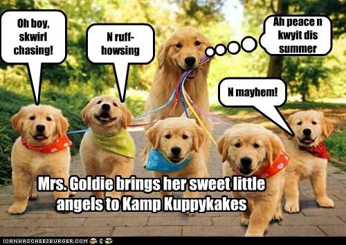 Mrs. Goldie brings her sweet little angels to Kamp Kuppykakes Ah peace n kwyit dis summer Oh boy, skwirl chasing! N ruff-howsing N mayhem!