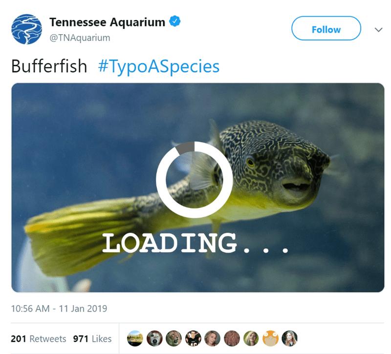 autocorrect typo zoo funny tweets animal tweets animals - 7530501
