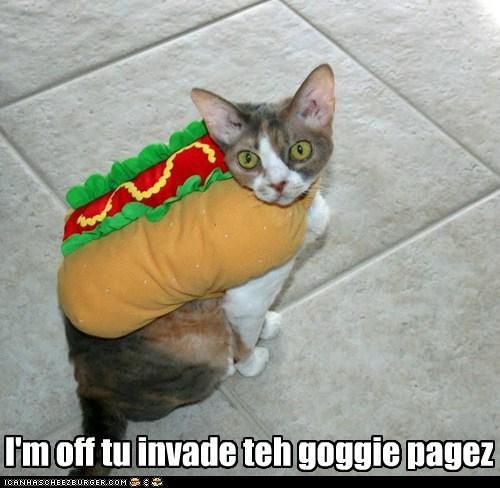 costume invade hotdogs funny - 7531283200
