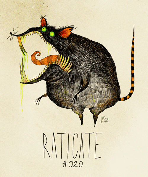 Illustration - hathe tar RATICATE ПСТЕ #020