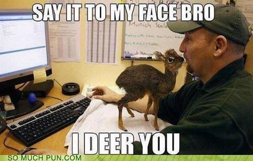 puns,cute,deer,funny