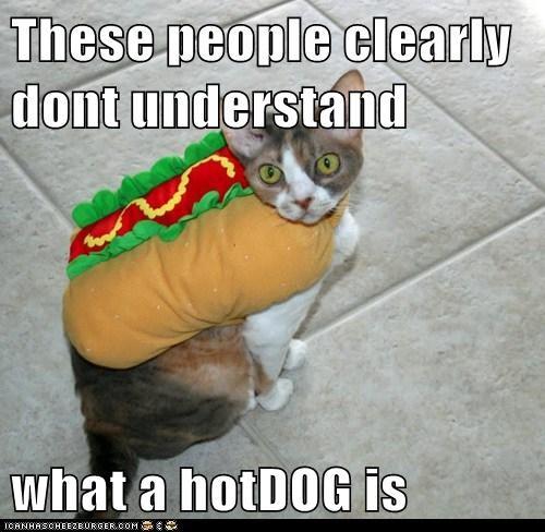 hotdog costume funny - 7533334272