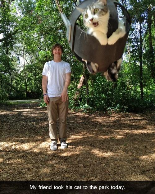 weeeee,park,swing,funny