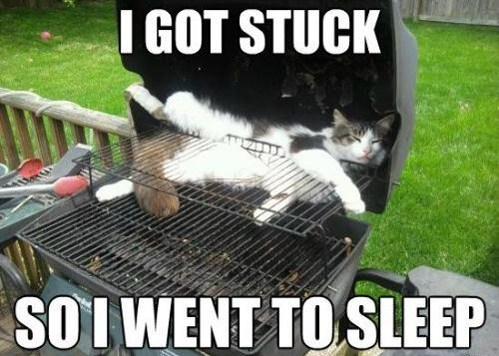 nap,stuck,grill,funny