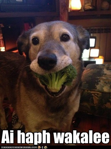 broccoli mouth full funny - 7533767936