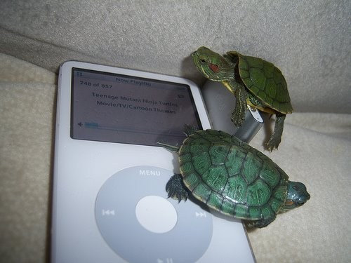 teenage mutant ninja turtles Music ipod turtles funny - 7533815040