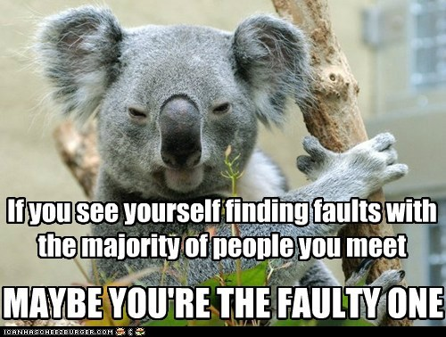 faults,koala,wise words