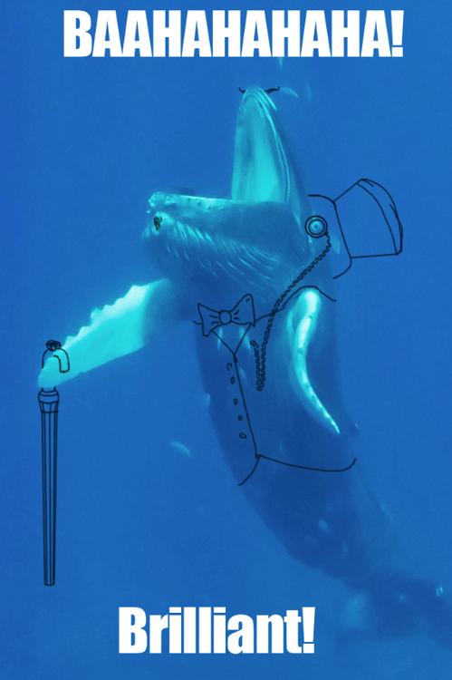 underwater sir drawings fish - 7534424832