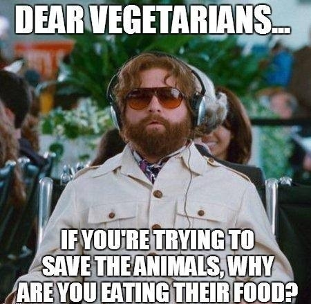 zack galifianakis vegetarians food americana - 7534435840