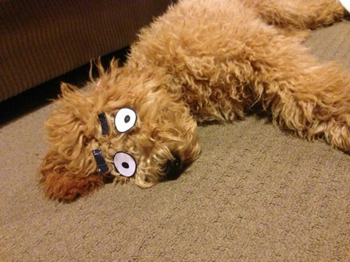 eyes cartoons sleeping funny - 7534520576