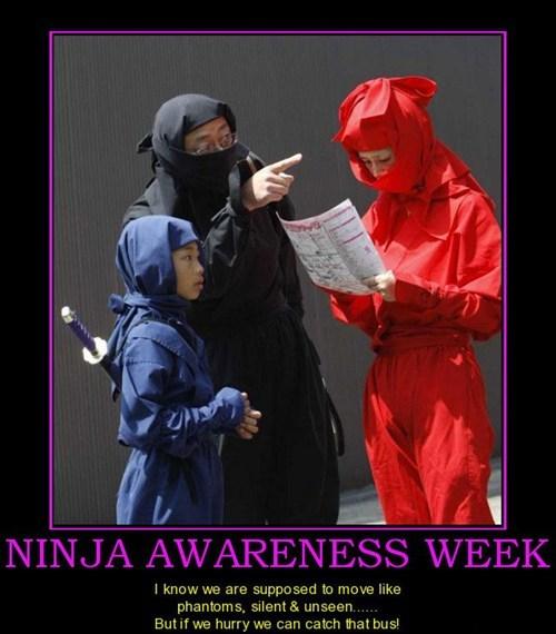 tourist ninja wtf family funny - 7534724096