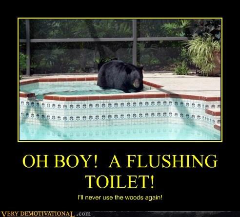 bad idea bear toilet funny - 7534852608
