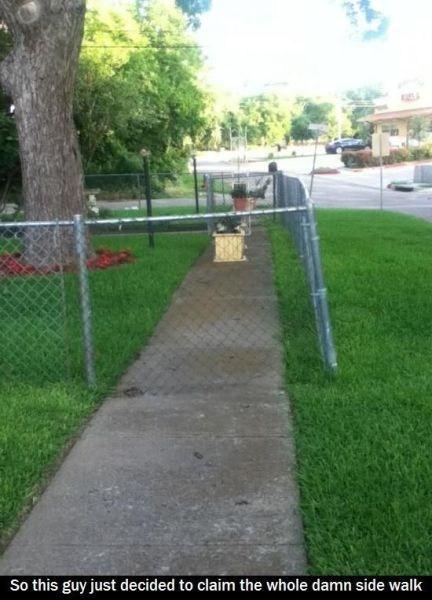fence,DIY,funny