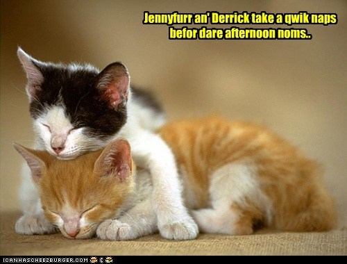 Jennyfurr an' Derrick take a qwik naps befor dare afternoon noms..