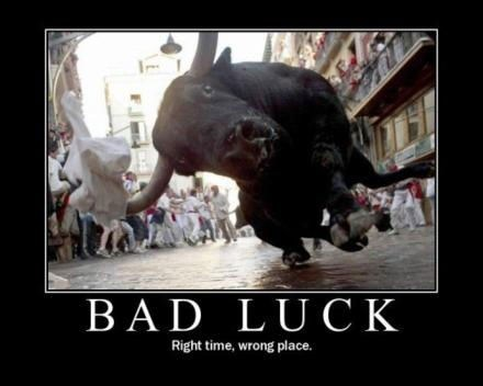 wrong bull bad luck funny