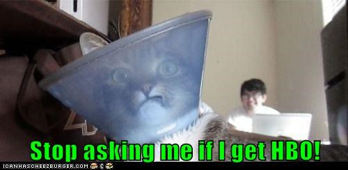 hbo elizabethan collar TV dish funny - 7537231360