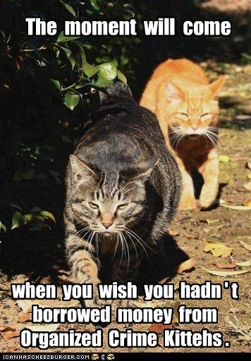 The moment will come when you wish you hadn ' t borrowed money from Organized Crime Kittehs .