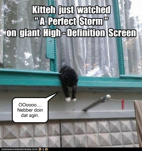 """Kitteh just watched """" A Perfect Storm """" on giant High - Definition Screen OOoooo.... Nebber doin dat agin."""