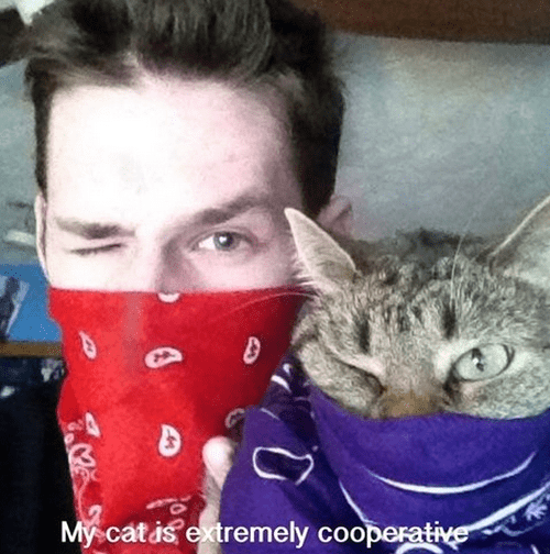 cooperative,bandanas,wink,funny