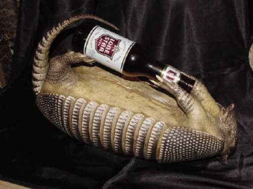 beer armadillo funny - 7537993728