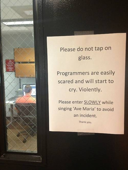 IRL programmers coding - 7538171648