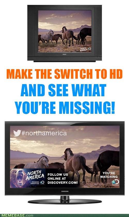 annoying hd TV animals - 7538374656