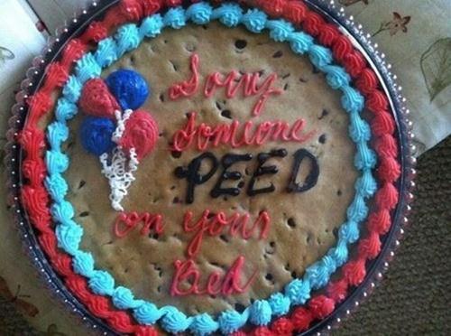 pie apology sorry funny