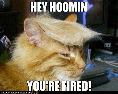 fired,toupee,donald trump,funny