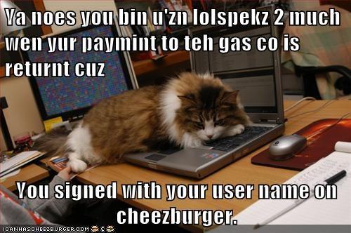 Cheezburger Image 7538933504