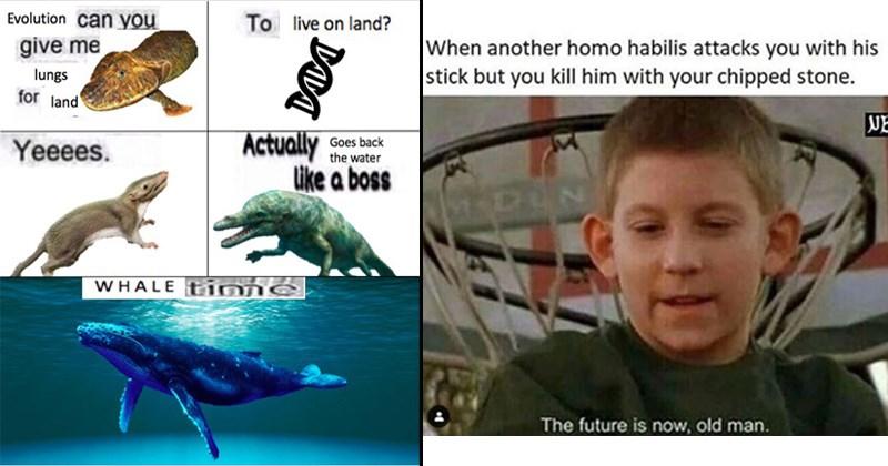 evolution creationism memes