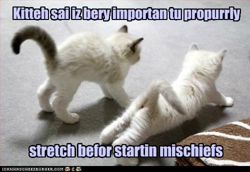 mischief funny stretch - 7540406528