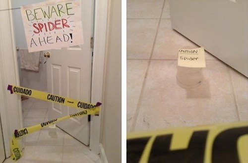 spiders,phobias,caution tape,funny,g rated,there I fixed it