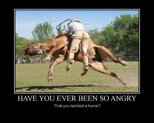 mule angry funny horse - 7541583360