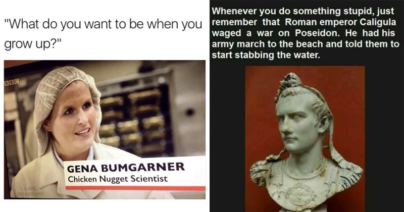Imagini amuzante si haioase - 28 Random Memes Thatll Throw Some Dumb Comedy Into Your Life