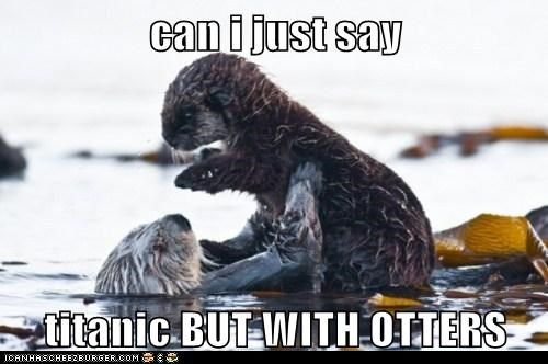 titanic,cute,otters