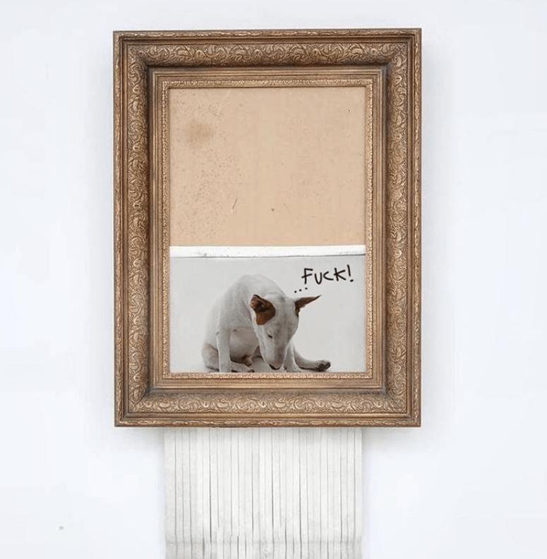bull terrier dogs illustrations artist funny dogs brazillian - 7544069