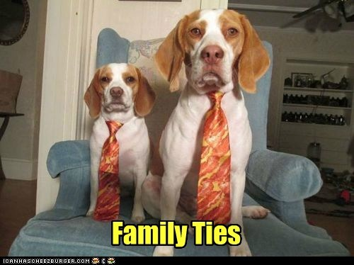 family ties,funny,bacon