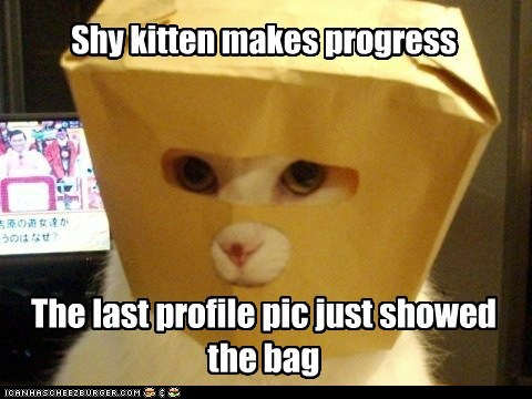 Shy kitten makes progress The last profile pic just showed the bag