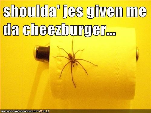 Cheezburger Image 7545557248