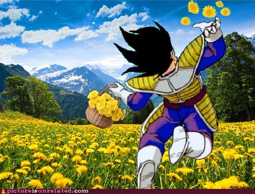 wtf Dragon Ball Z vegeta flowers funny