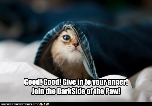 Good! Good! Give in to your anger! Join the DarkSide of the Paw!