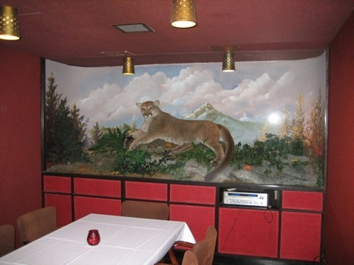 cougar,seattle,vitos,pub of the week