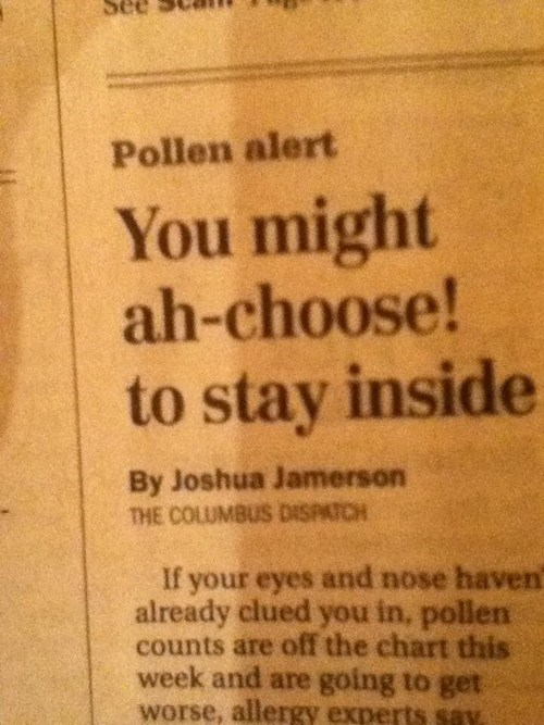 allergies,puns,headlines,funny