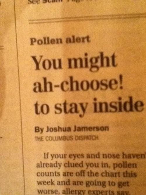 allergies puns headlines funny