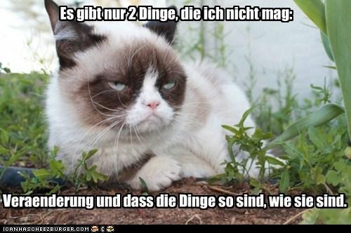 Cheezburger Image 7548708608