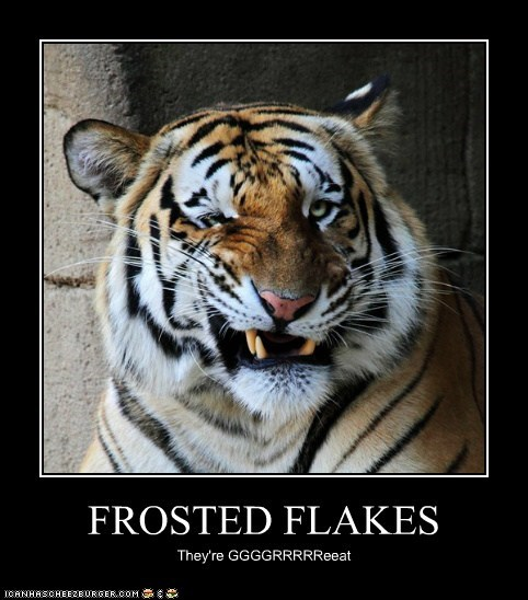 tigers,funny,cereal,frosted flakes