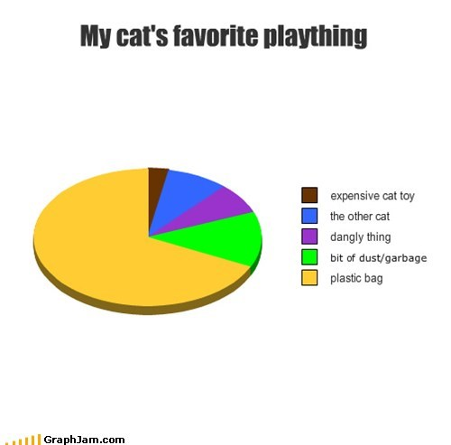 pie charts graphs Cats funny - 7551242752